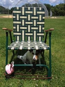 lawn chair huh